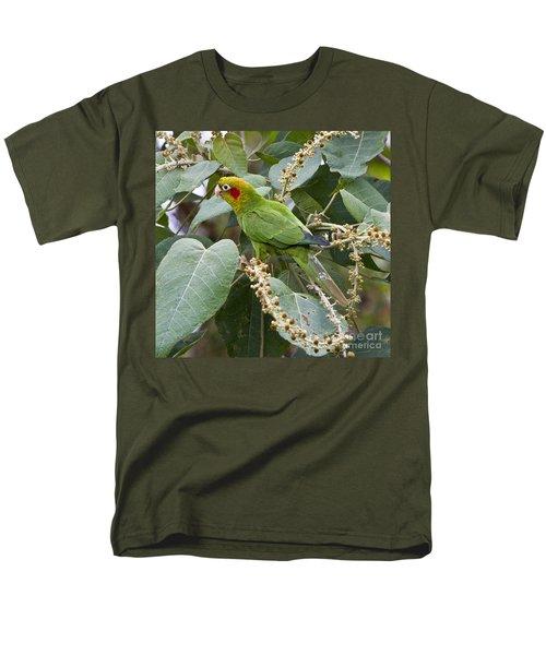 Chiriqui Conure 2 Men's T-Shirt  (Regular Fit) by Heiko Koehrer-Wagner