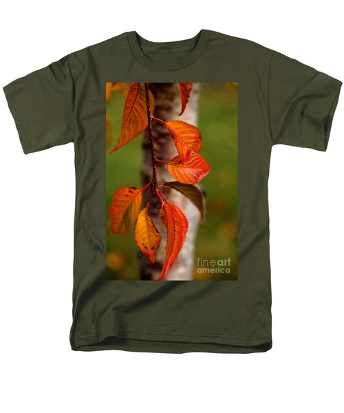 Fall Beauty T-Shirt by Sharon Elliott