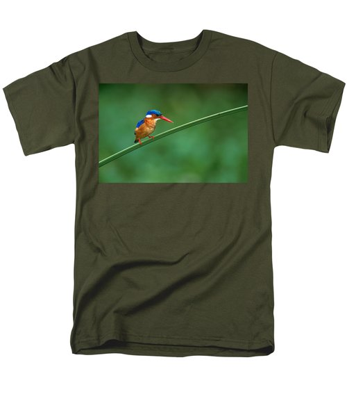 Malachite Kingfisher Tanzania Africa Men's T-Shirt  (Regular Fit) by Panoramic Images