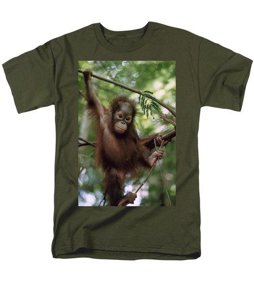 Orangutan Infant Hanging Borneo T-Shirt by Konrad Wothe