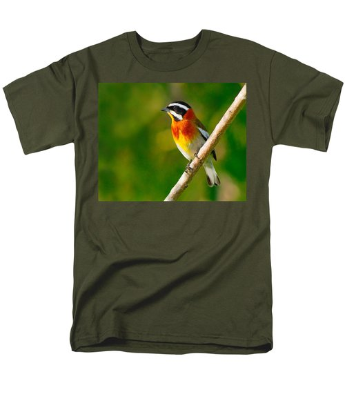 Western Spindalis T-Shirt by Tony Beck
