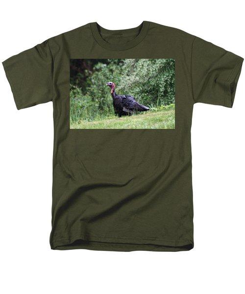 Wild Turkey T-Shirt by Karol  Livote