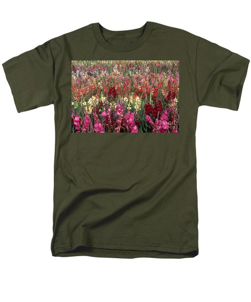 Gladioli Garden in Early Fall T-Shirt by Yva Momatiuk and John Eastcott and Photo Researchers