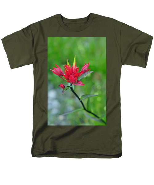 Red Indian Paintbrush T-Shirt by Lisa  Phillips