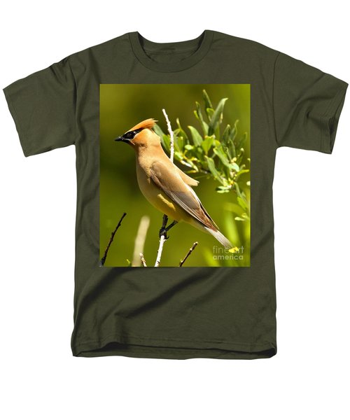 Cedar Waxwing Closeup Men's T-Shirt  (Regular Fit) by Adam Jewell