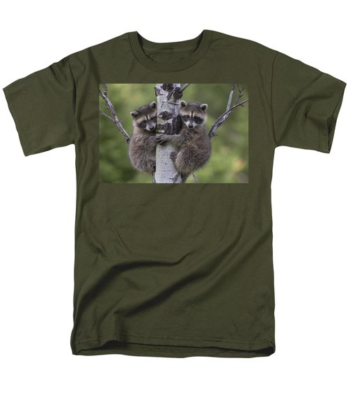 Raccoon Two Babies Climbing Tree North Men's T-Shirt  (Regular Fit) by Tim Fitzharris
