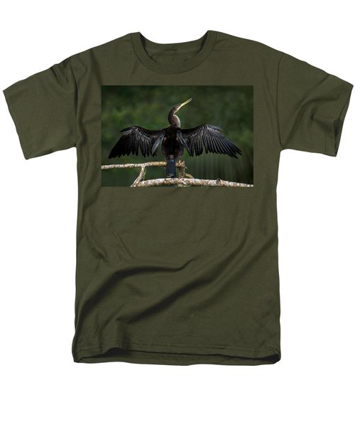 Anhinga Anhinga Anhinga Perching Men's T-Shirt  (Regular Fit) by Panoramic Images