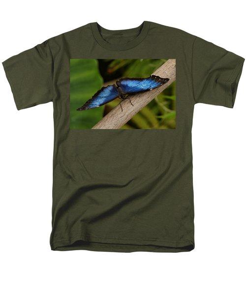 Blue Morpho Butterfly T-Shirt by Sandy Keeton