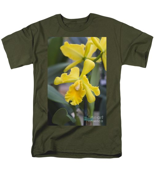Bright yellow cattleya orchid T-Shirt by Allan Seiden - Printscapes