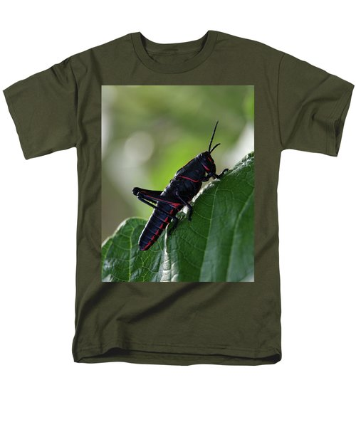 Eastern Lubber Grasshopper Men's T-Shirt  (Regular Fit) by Richard Rizzo