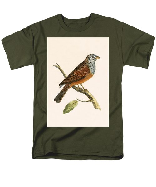 Striolated Bunting Men's T-Shirt  (Regular Fit) by English School