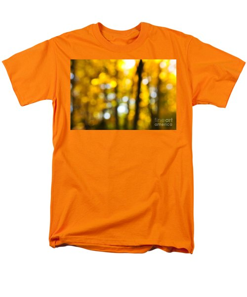 Fall forest in sunshine T-Shirt by Elena Elisseeva