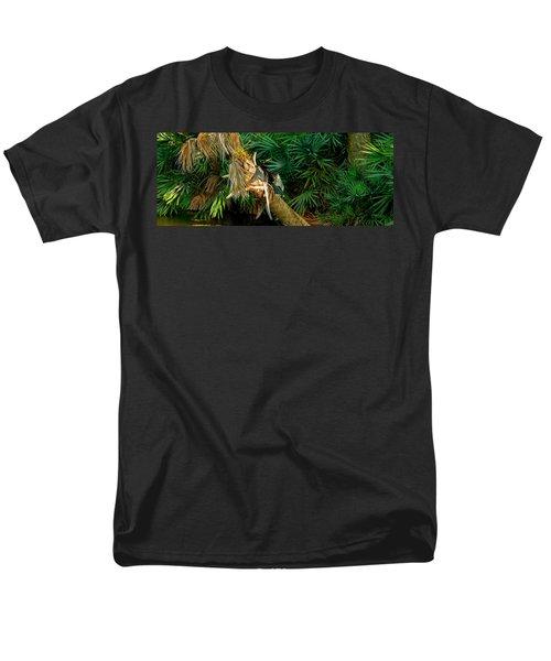 Anhinga Anhinga Anhinga On A Tree Men's T-Shirt  (Regular Fit) by Panoramic Images