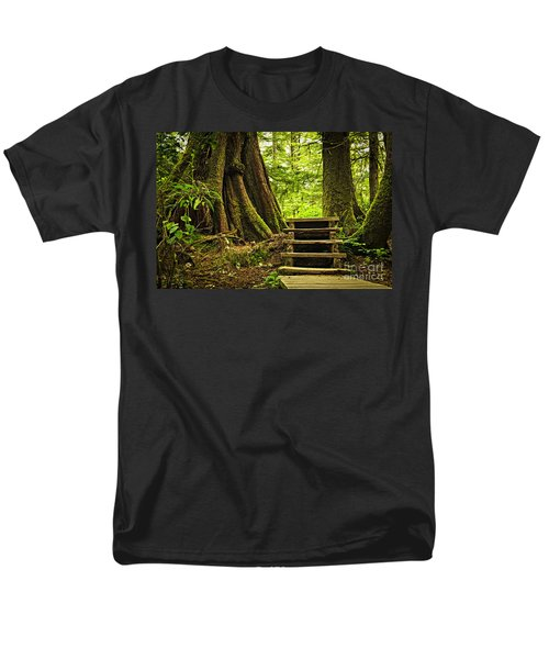 Path in temperate rainforest T-Shirt by Elena Elisseeva