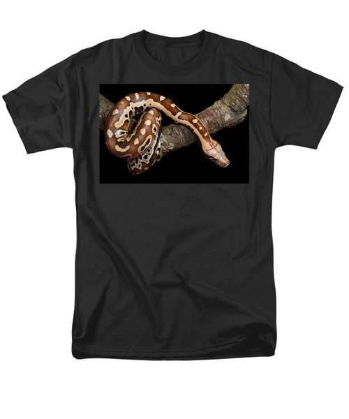 Blood Python Python Brongersmai Men's T-Shirt  (Regular Fit) by David Kenny