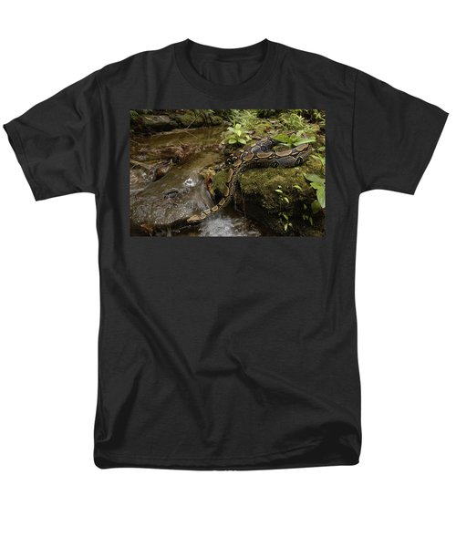 Boa Constrictor Crossing Stream Men's T-Shirt  (Regular Fit) by Pete Oxford