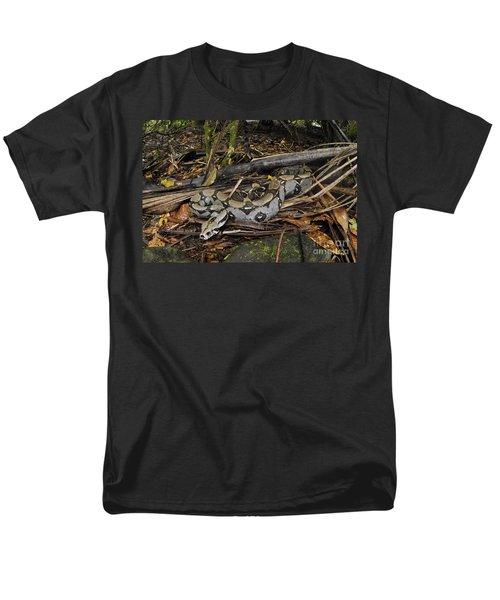 Boa Constrictor Men's T-Shirt  (Regular Fit) by Francesco Tomasinelli