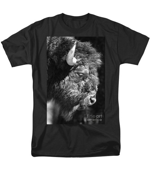 Buffalo Portrait T-Shirt by Robert Frederick
