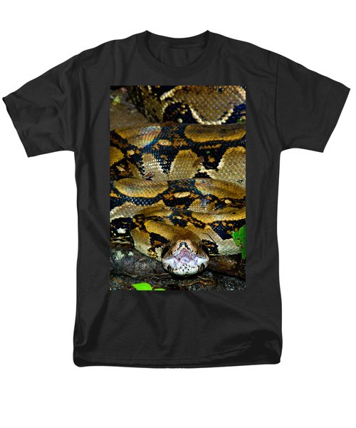 Close-up Of A Boa Constrictor, Arenal Men's T-Shirt  (Regular Fit) by Panoramic Images
