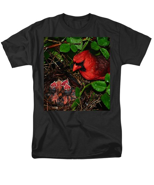 Feed Me Daddy T-Shirt by Frozen in Time Fine Art Photography