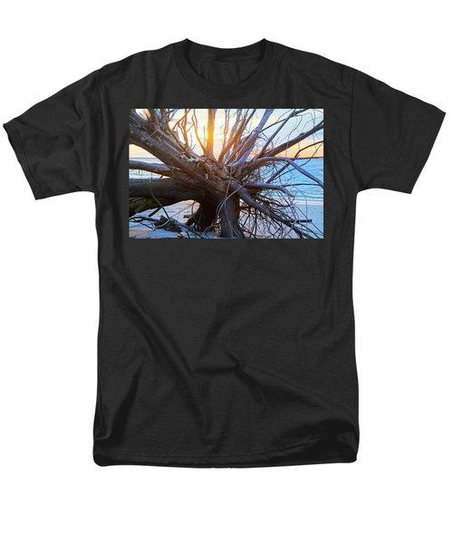 Historic Roots T-Shirt by Betsy C  Knapp