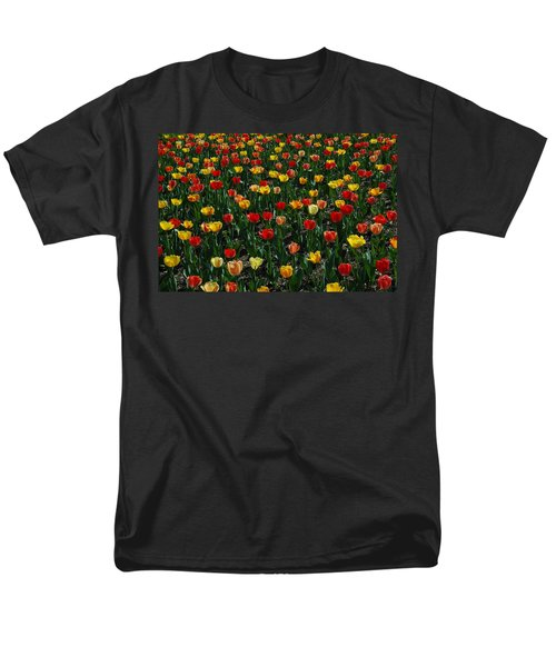 Many Tulips T-Shirt by Raymond Salani III