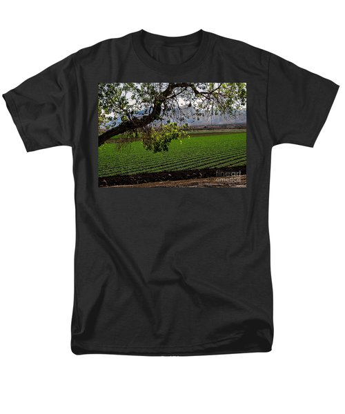 Panoramic of Winter Lettuce T-Shirt by Robert Bales