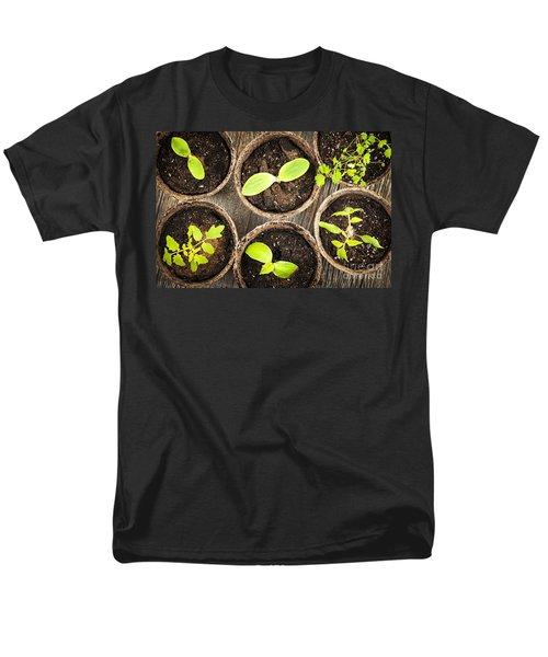 Seedlings growing in peat moss pots T-Shirt by Elena Elisseeva