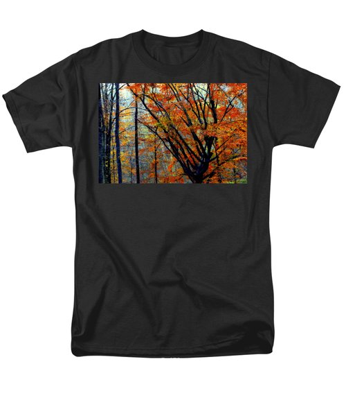 SONG of AUTUMN T-Shirt by KAREN WILES