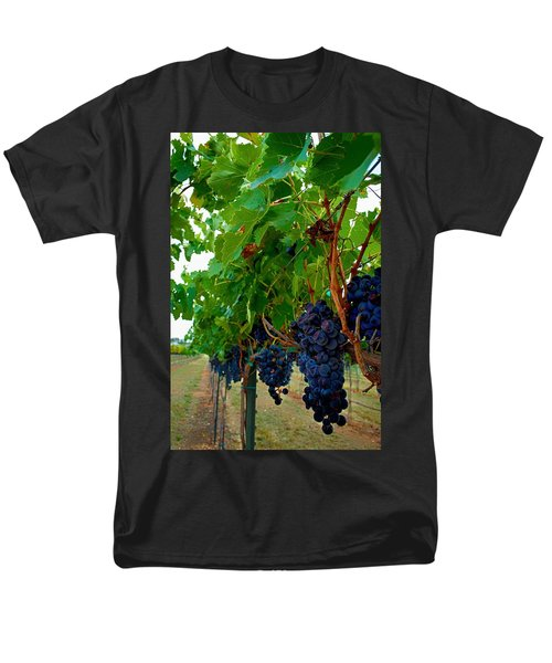 Wine Grapes on the Vine T-Shirt by Kristina Deane