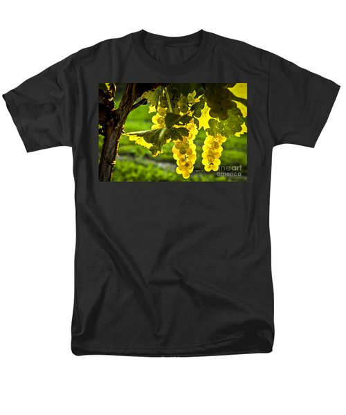 Yellow grapes in sunshine T-Shirt by Elena Elisseeva