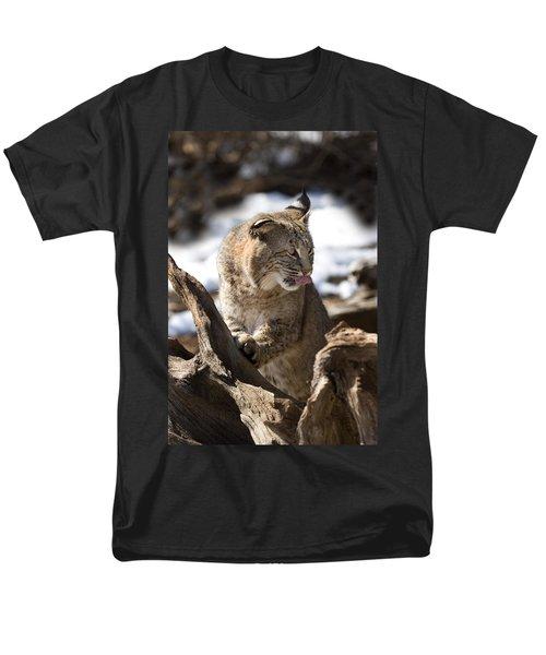 Bobcat T-Shirt by Jeff Grabert