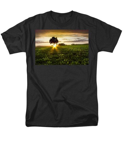 A Golden Evening  T-Shirt by Debra and Dave Vanderlaan