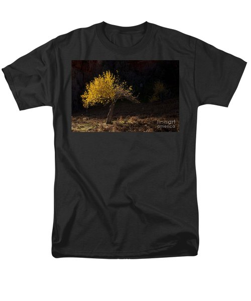 Autumn Light T-Shirt by Mike  Dawson