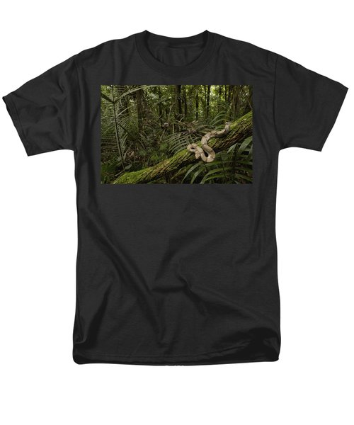 Boa Constrictor Boa Constrictor Coiled Men's T-Shirt  (Regular Fit) by Pete Oxford