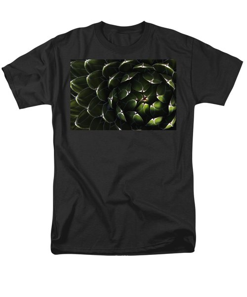 Bolivian Plant In Late Afternoon Light T-Shirt by Robert Postma