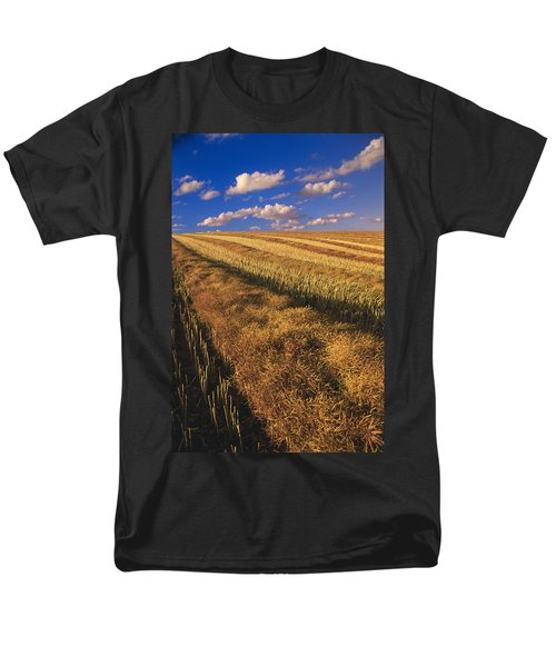 Canola Field, Tiger Hills, Manitoba T-Shirt by Dave Reede