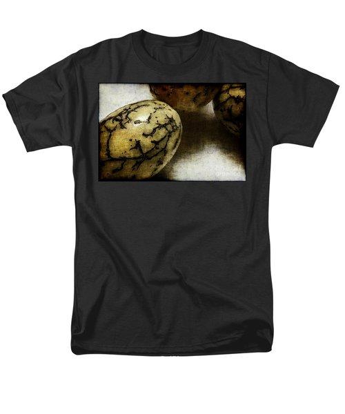 Dragon Eggs T-Shirt by Judi Bagwell