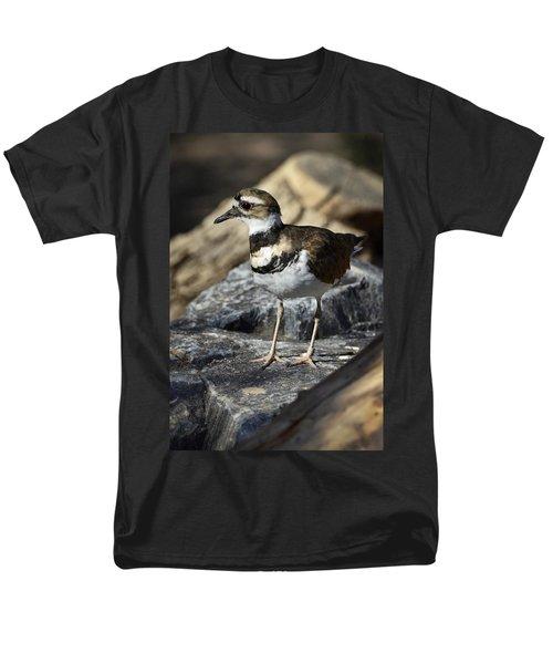 Killdeer Men's T-Shirt  (Regular Fit) by Saija  Lehtonen