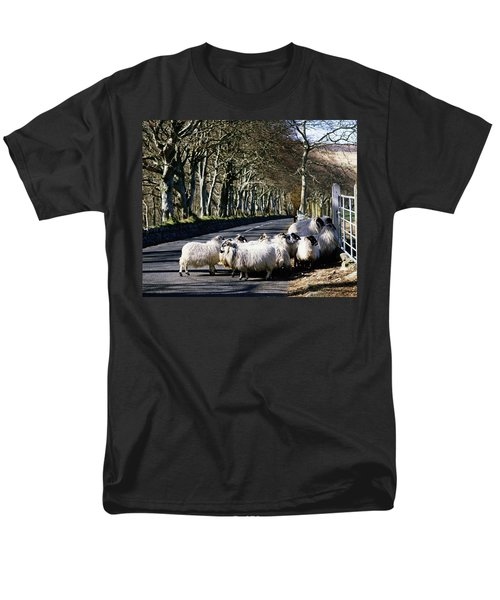 Sheep On The Road, Torr Head, Co T-Shirt by The Irish Image Collection