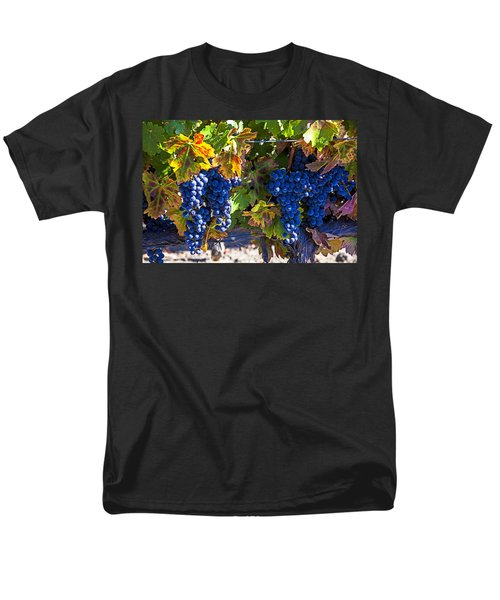 Grapes ready for harvest T-Shirt by Garry Gay