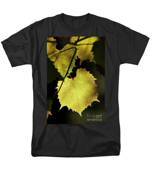 grapevine in the back lighting T-Shirt by Michal Boubin