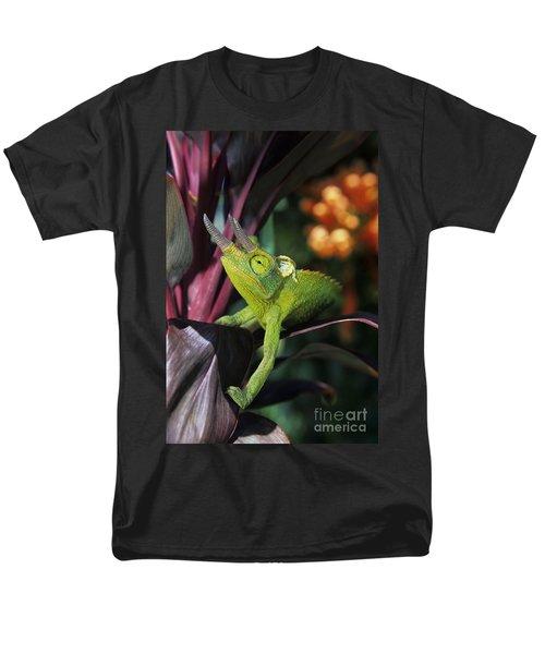 Jacksons Chameleon on Leaf T-Shirt by Dave Fleetham - Printscapes