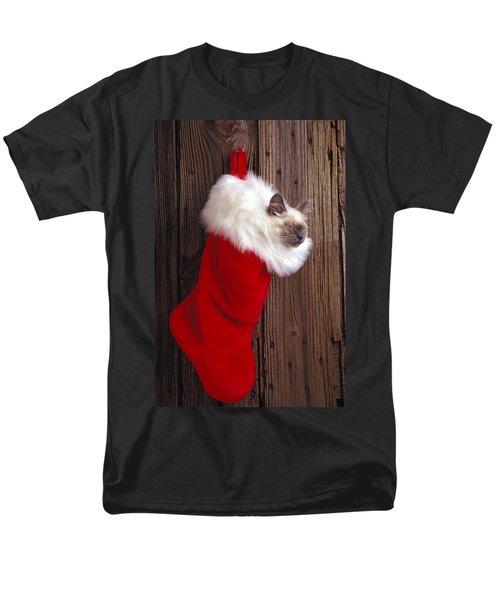 Kitten in stocking T-Shirt by Garry Gay