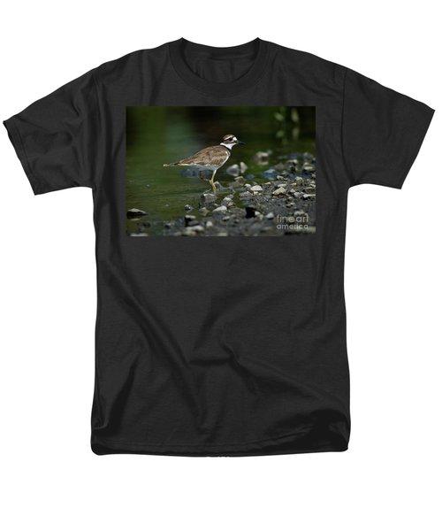 Killdeer  Men's T-Shirt  (Regular Fit) by Douglas Stucky