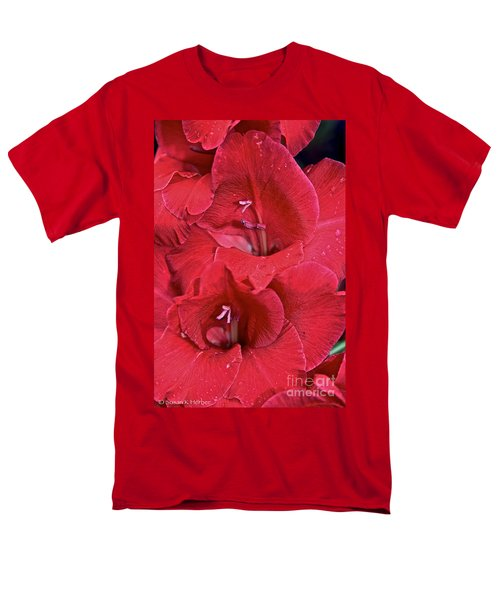 Red Gladiolus T-Shirt by Susan Herber