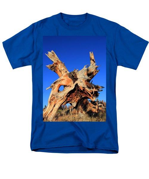Fallen T-Shirt by Shane Bechler