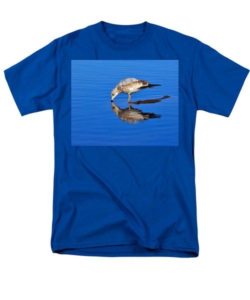 Juvenile Ring-billed Gull  T-Shirt by Tony Beck