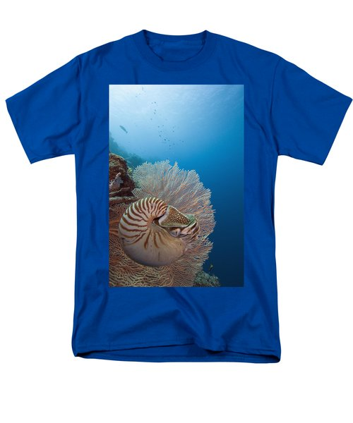 Chambered Nautilus T-Shirt by Dave Fleetham - Printscapes