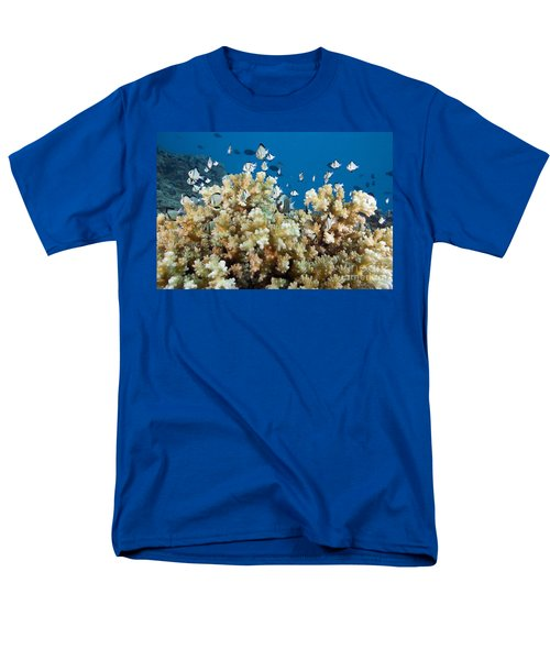 Damselfish Among Coral T-Shirt by Dave Fleetham - Printscapes